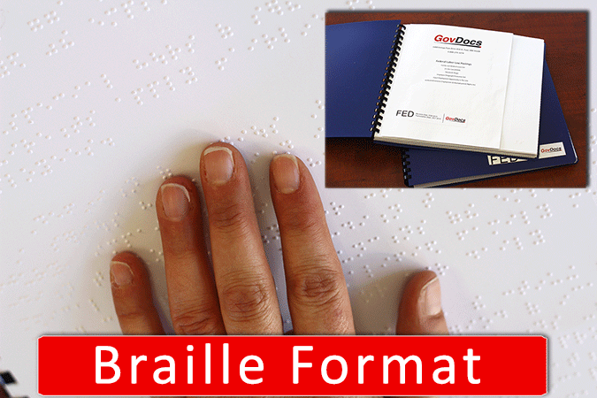 Braille Federal Poster