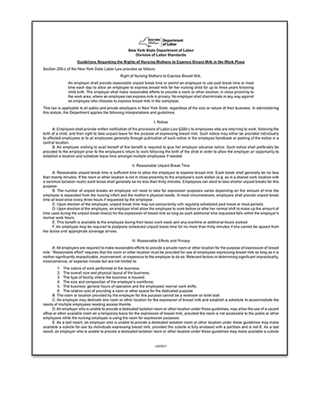 New York Guidelines Regarding the Rights of Nursing Mothers Poster