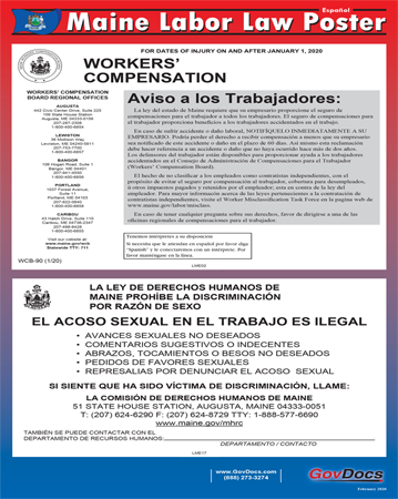 Maine State Laminated State-on-One Poster - Spanish