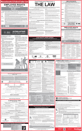 Massachusetts State and Federal Laminated Combined Poster