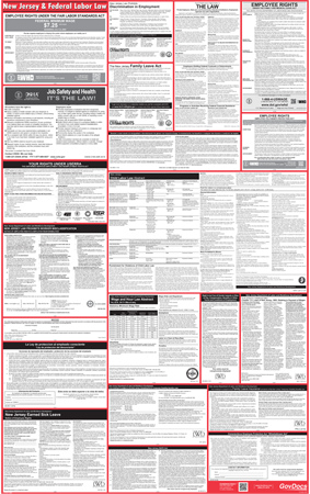 New Jersey State and Federal Laminated Combined Poster