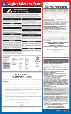 Virginia State Laminated State-on-One Poster - Spanish