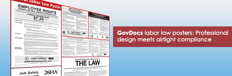 What makes a GovDocs labor law poster?